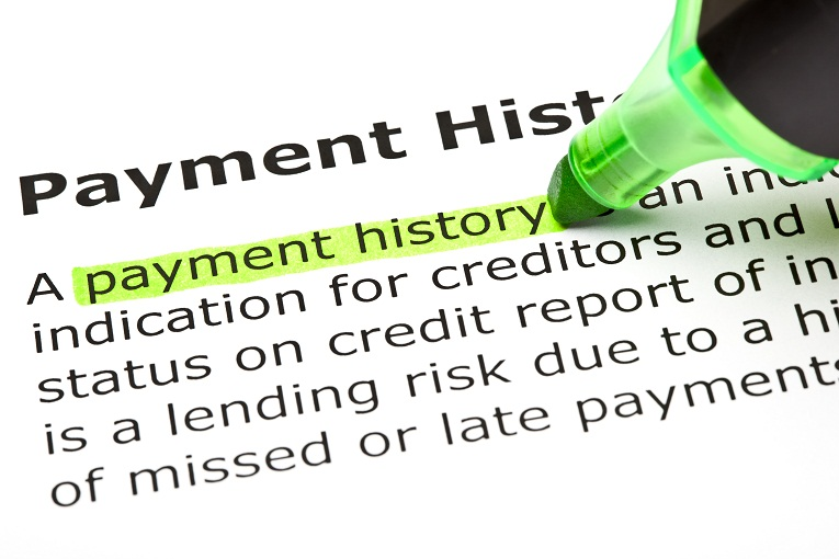 definition of payment history higlighted
