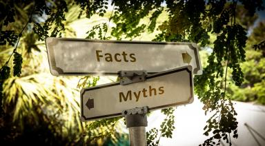 insurance myths facts surex