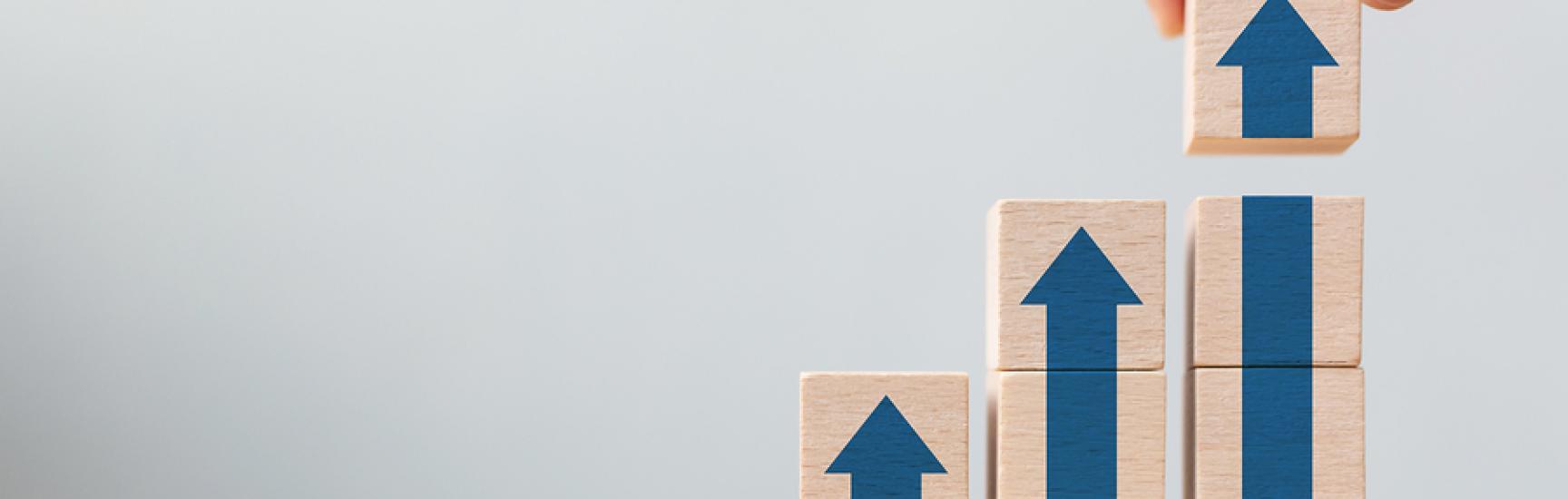 surex ladder career path business